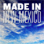 Made in New Mexico (Documentary)